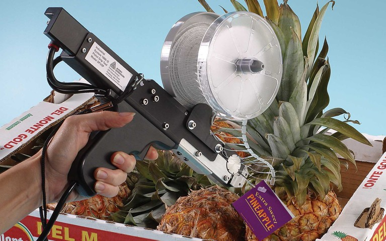 System 1000 Tagging a Pineapple
